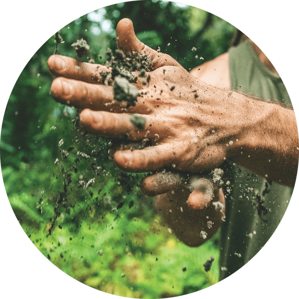 Regenerative Agriculture Hands-on Learning